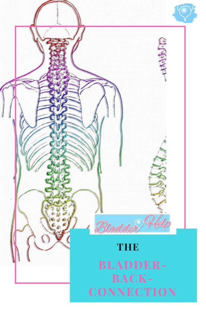 The Bladder-Back-Connection | Bladder-Help.com
